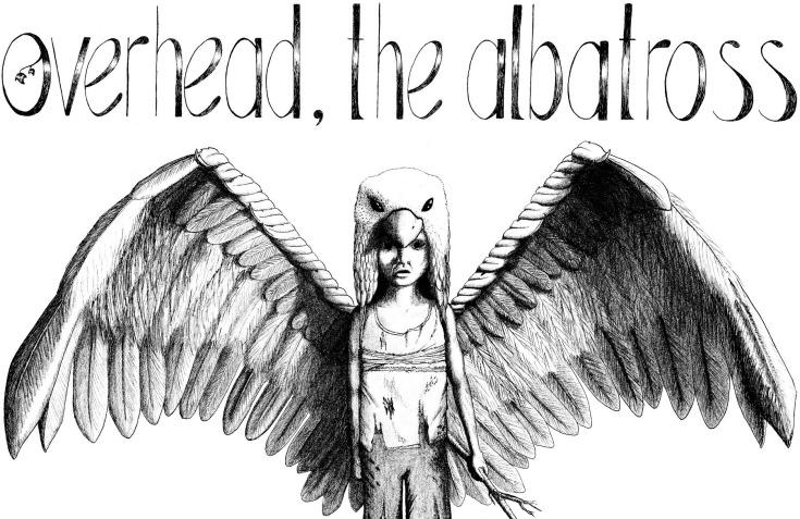 Overhead, the Albatross
