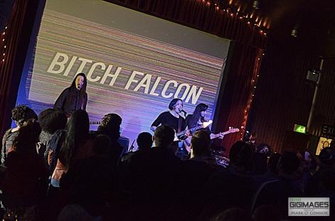 Bitch Falcon in The Sugar Club by Mark O' Connor (2 of 19)
