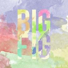 Big Fig