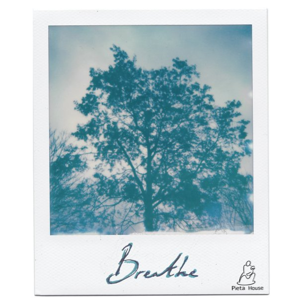 Breathe, For Pieta House album cover