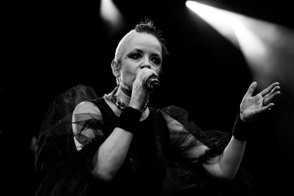 garbage iveagh gardens dublin photo by steve white 01
