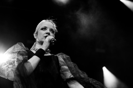 garbage iveagh gardens dublin photo by steve white 02