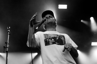 mac demarco iveagh gardens dublin photo by stephen white tlmt 26